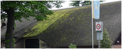 Schaduw dak